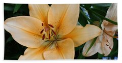 Hand Towel featuring the photograph Tiger Lily by Dora Sofia Caputo Photographic Art and Design