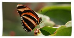 Tiger Striped Butterfly Hand Towel