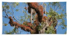 Tikal Furry Tree Closeup Hand Towel