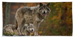 Timber Wolf Pictures 410 Hand Towel