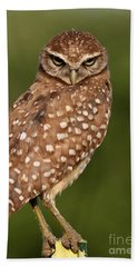 Tiny Burrowing Owl Hand Towel