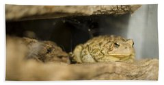 Toad In The Hole Hand Towel by Heather Applegate