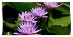 Together We Bloom - Violet Lily Bath Towel by Ramabhadran Thirupattur