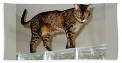 Hand Towel featuring the photograph Tora On Glass II by Phyllis Kaltenbach