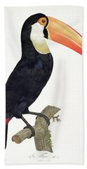 Toucan Hand Towel by Jacques Barraband