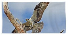 Touch Down - Osprey In Flight Hand Towel