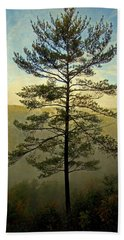Bath Towel featuring the photograph Towering Pine by Suzanne Stout