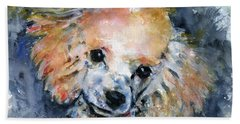Toy Poodle Hand Towel by John D Benson