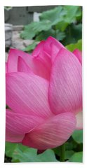 Tranquil Lotus  Hand Towel