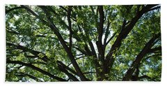 Tree Canopy Sunburst Hand Towel