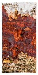 Tree Closeup - Wood Texture Hand Towel by Matthias Hauser