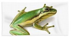 Green Tree Frog Hand Towel by Sarah Batalka