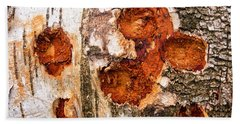 Tree Trunk Closeup - Wooden Structure Hand Towel