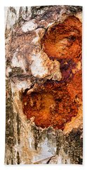 Tree Trunk Closeup - Wooden Structure Bath Towel