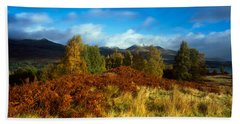 Trees In A Field, Loch Tay, Scotland Hand Towel