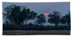 Trees In A Forest At Dusk, Kings Pool Hand Towel