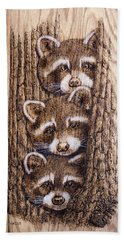 Tres Amegos Hand Towel by Ron Haist