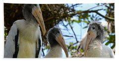 Triplet Wood Stork Nestlings Bath Towel by Richard Bryce and Family