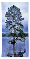 The Healing Tree - Trap Pond State Park Delaware Hand Towel