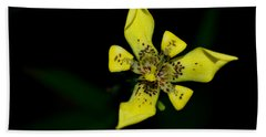 Tropic Yellow Hand Towel by Miguel Winterpacht