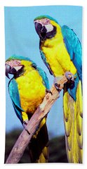 Tropical Parrots In San Francisco Hand Towel