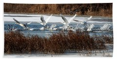 Hand Towel featuring the photograph Trumpeter Swans by John Freidenberg