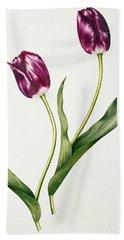 Tulip Negrita Hand Towel