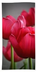 Tulips In The  Morning Light Hand Towel by Mary Machare