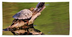 Turtle Reflection Hand Towel