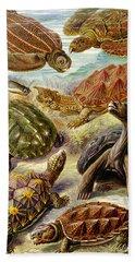 Turtles Turtles And More Turtles Hand Towel