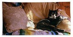 Tuxedo Cat Sitting On Sofa In San Bath Towel