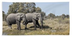 Two Bull African Elephants - Okavango Delta Hand Towel