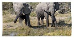 Bath Towel featuring the photograph Two Male Elephants Okavango Delta by Liz Leyden