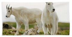 Two Mountain Goats Near The Summit Bath Towel