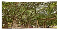 Under The Canopy - Banyan Tree Park In Maui. Hand Towel