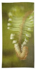 Unfurling Fern Hand Towel