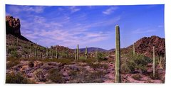 Various Cactus Plants In A Desert Hand Towel
