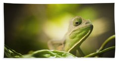 Veiled Chameleon Is Watching You Bath Towel