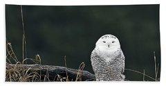 Vermont Snowy Owl Bath Towel