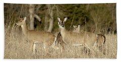 Vigilant White-tailed Deer Hand Towel