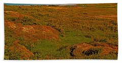 Viking Landing Point At L'anse Aux Meadows-nl Hand Towel