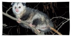 Virginia Opossum Bath Towel