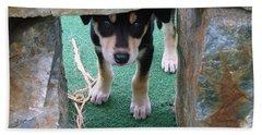 Wannabe Sled Dog In The Yukon Hand Towel by Richard Rosenshein