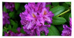 Washington Coastal Rhododendron Hand Towel by Ed  Riche