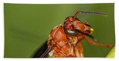 Wasp 1 Hand Towel
