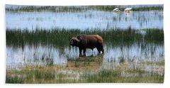 Water Buffalo At Lake Nakuru Hand Towel
