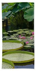 Bath Towel featuring the photograph Water Lilies And Platters And Lotus Leaves by Byron Varvarigos
