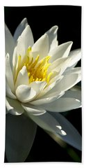 Hand Towel featuring the photograph Water Lily by Christina Rollo