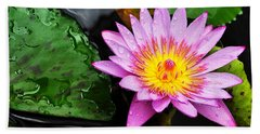 Water Lily Hand Towel by Denise Bird