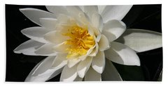 Hand Towel featuring the photograph Water Lily  by Denyse Duhaime